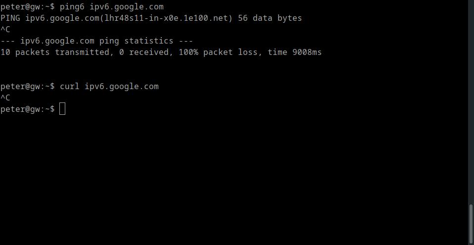 Can't curl ipv6.google.com